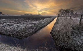 Picture frost, field, sunset