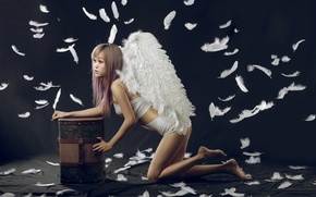 Picture wings, angel, feathers, Asian