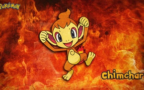 Picture fire, anime, monkey, pokemon, chimchar