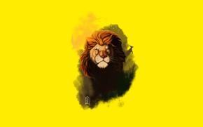 Picture face, Leo, mane, king