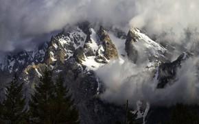 Picture snow, mountains, Grand Teton National Park