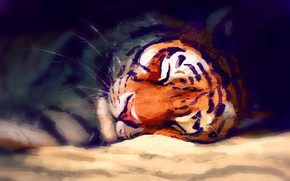 Picture tiger, sleeping, by Meorow
