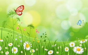 Picture GRASS, BUTTERFLY, SUMMER, THE WALLPAPERS