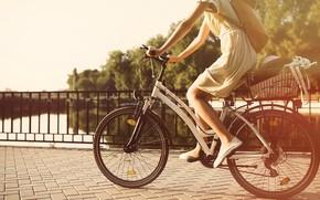 Wallpaper girl, bridge, bike, the sun, summer
