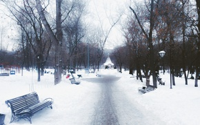 Picture Winter, Trees, Snow, Park, Square, Benches