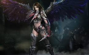 Picture look, girl, weapons, armor, Wings