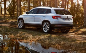 Wallpaper Skoda, vegetation, 2017, Karoq, Skoda, crossover, white, trees, road, puddle