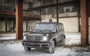 Picture snow, wall, vegetation, Mercedes-Benz, support, 2018, G-Class