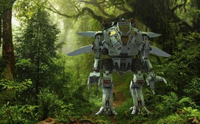 Picture forest, trees, robot, trail, Merlin Scout
