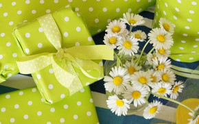 Picture flowers, chamomile, bouquet, petals, gifts, white, white, flowers, petals, bouquet, gifts, chamomile