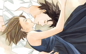 Picture girl, romance, art, pair, guy, Nodame Cantabile
