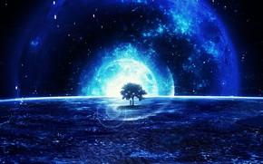 Wallpaper space, tree, fantasy, Y_Y