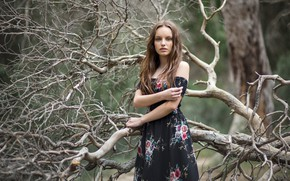 Picture forest, girl, Claudia Followed