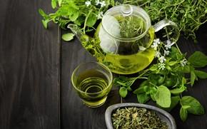 Picture green, drink, cup, teapot, Melissa, tea, green tea