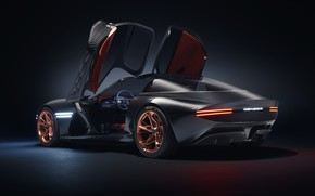 Picture machine, auto, wings, genesis essentia concept