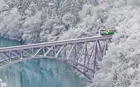 Picture winter, snow, trees, bridge, train, Japan, Shazam