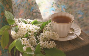 Picture tea, Cup, cherry
