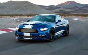 Wallpaper Shelby, racing track, Super Shake