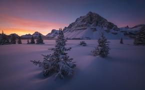 Wallpaper AIMA, Canada, Banff National Park, dawn, Albert, Banff national Park, Canada, ate, Alberta, Canadian Rockies, ...