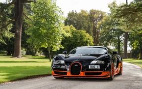 Picture Park, black, Veyron, Bugatti Veyron, hypercar
