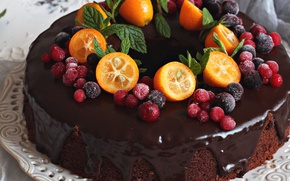 Wallpaper chocolate, kumquat, cake, berries