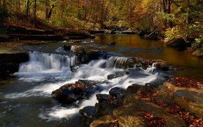 Picture Nature, Stream, Autumn, River, Forest