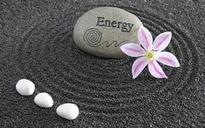 Wallpaper philosophy, stone, Zen, Zen, Japan, energy, sand monk, garden, garden, Japan, energy, flowers, stone