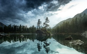 Picture forest, nature, lake, morning