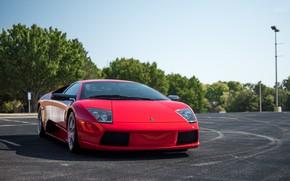 Picture Lamborghini, Red, Murcielago