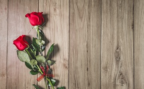 Picture red, wood, romantic, roses, red roses