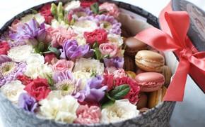 Picture box, gift, roses, bow, chrysanthemum, macaroon