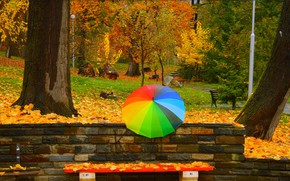 Picture Autumn, Trees, Umbrella, Park, Fall, Foliage, Park, Autumn, Umbrella, Colors, Trees, Benches