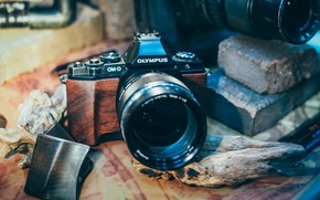 Picture design, style, background, the camera, lens, Olympus