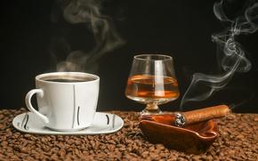 Picture coffee, Cup, cigar, cognac, grain