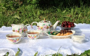 Picture greens, summer, grass, the sun, cherry, tea, glade, kettle, cookies, candy, Cup, sugar, tablecloth, bokeh, …