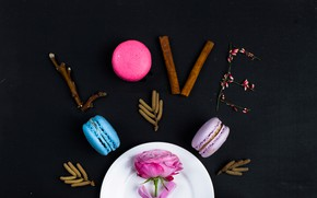 Picture love, flowers, rose, petals, colorful, love, rose, pink, flowers, romantic, macaroon, macaron, macaroon