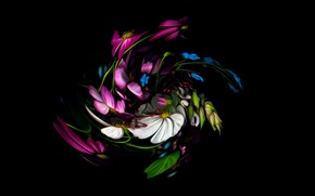 Picture abstraction, fantasy, black background, picture, floral spiral