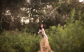Picture forest, girl, butterfly, dress, Aleah Michele
