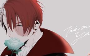 Wallpaper guy, background, Todoroki Shouto, Boku no Hero Academy, rose