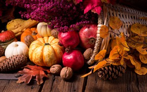 Picture leaves, pumpkin, nuts, garnet, autumn gifts