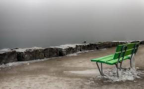 Picture fog, bird, shore, bench