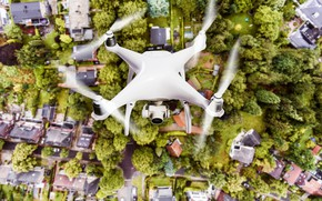 Picture white, trees, drones