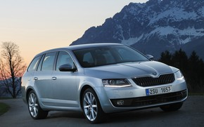 Picture the sky, asphalt, trees, mountains, lawn, 4x4, Skoda, universal, 2013, Skoda, Octavia Combi, gray-silver