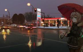 Picture girl, night, the city, umbrella, anime, art