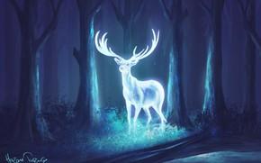 Picture forest, night, deer, fantasy, art, horns