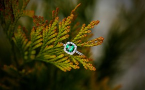 Wallpaper stone, emerald, decoration, ring, branch
