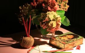 Picture bouquet, pencils, still life, thread, sharpener