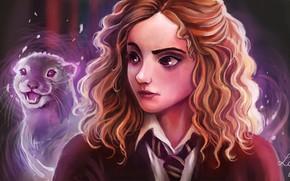 Picture art, Harry Potter, Hermione Granger, by Ludmila-Cera-Foce