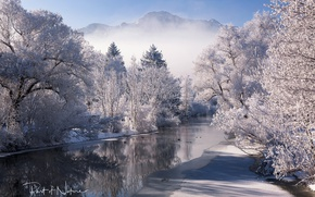Picture winter, snow, trees, mountains, nature, river