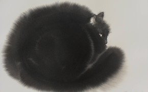 Picture grey background, painting, Endre Penovac, black cat, watercolor is wet, black and white drawing, fluffy …